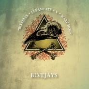 Los Bluejays / E.p. Release Back (CD/Tape/Digital)
