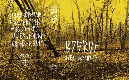 Bog Rot / Cassette Sleeve